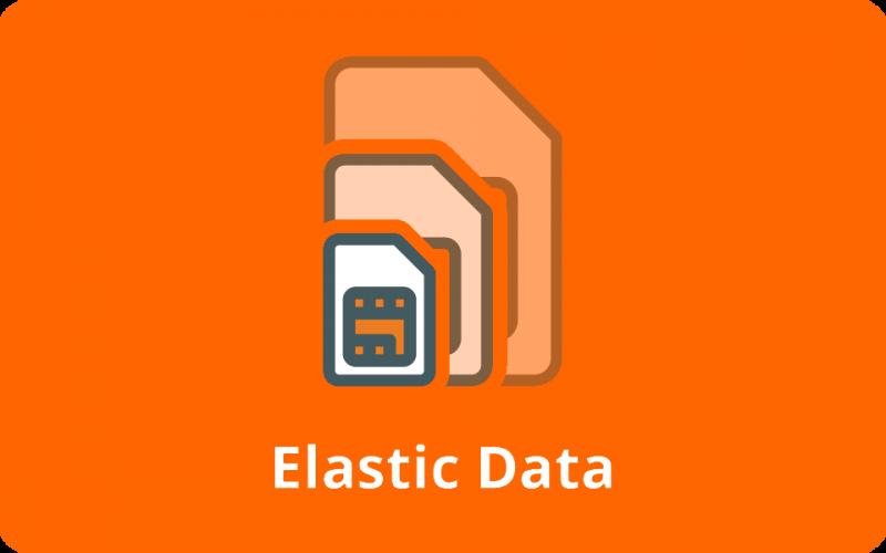 Elastic Data Icon easyNetworks Orange